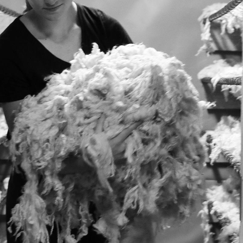 Tørking av ull